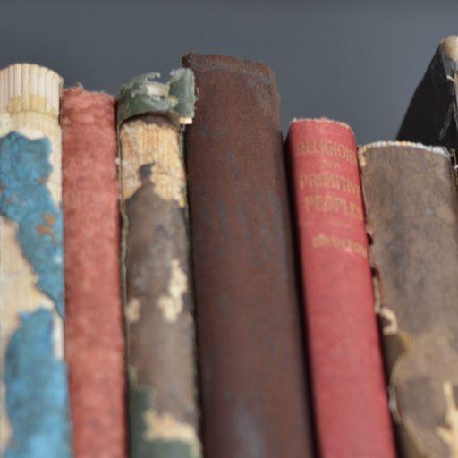 cropped-cropped-books_portada1.jpeg
